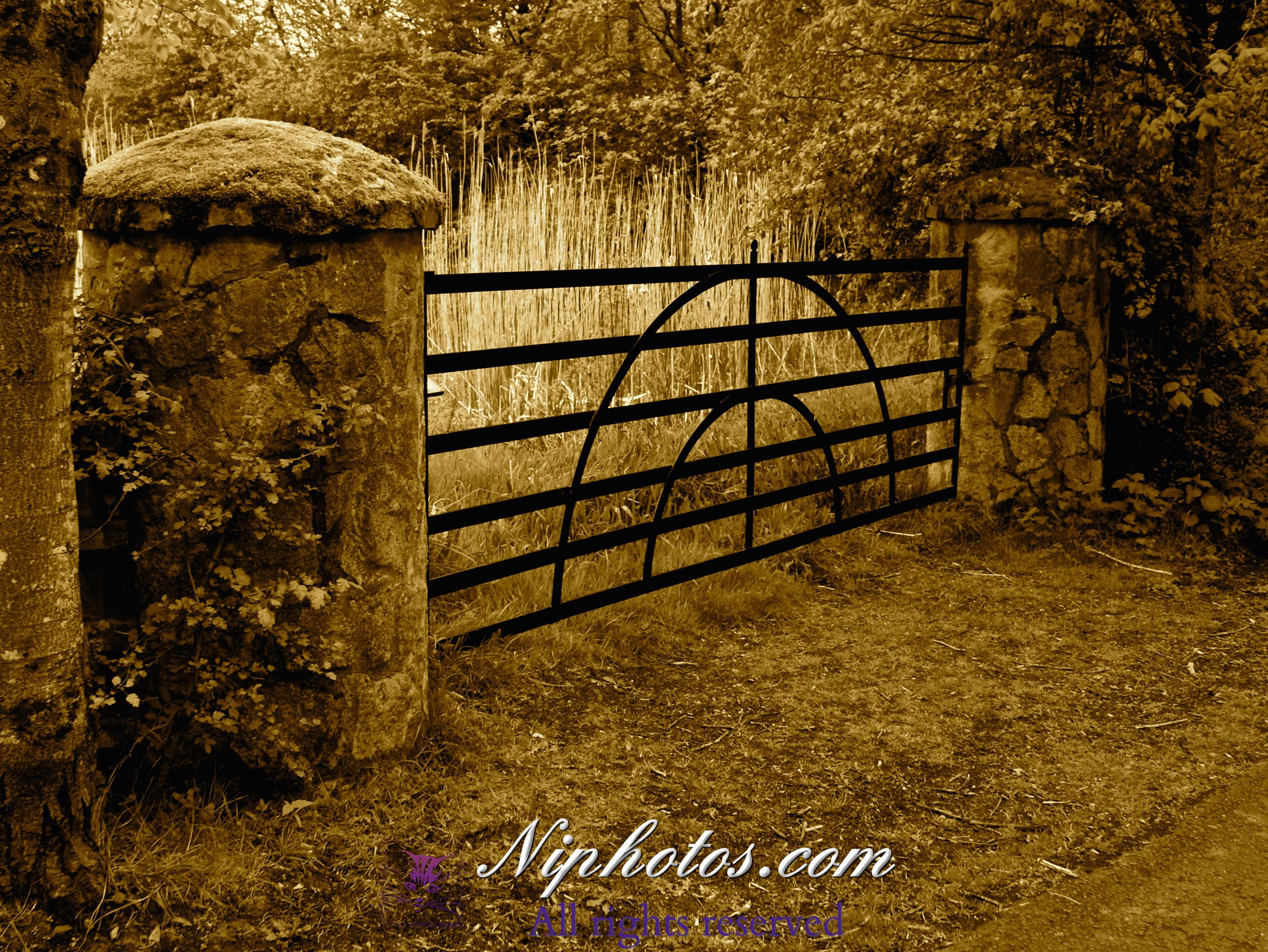Old Farm Gates At Tollymore Forest Park Bryansford Road