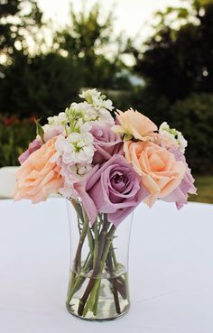 Purple And Peach Roses