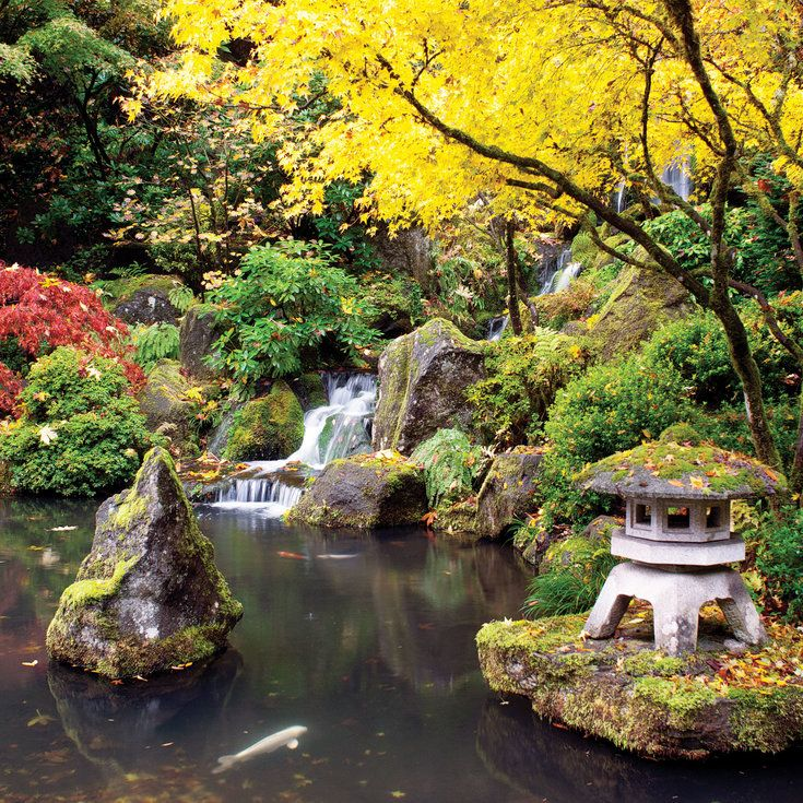 Portland Japanese Garden | Oregon/Washington | Pinterest | Portland ...