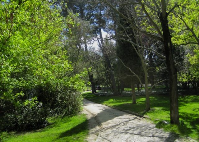 Lugares para hacer picnic