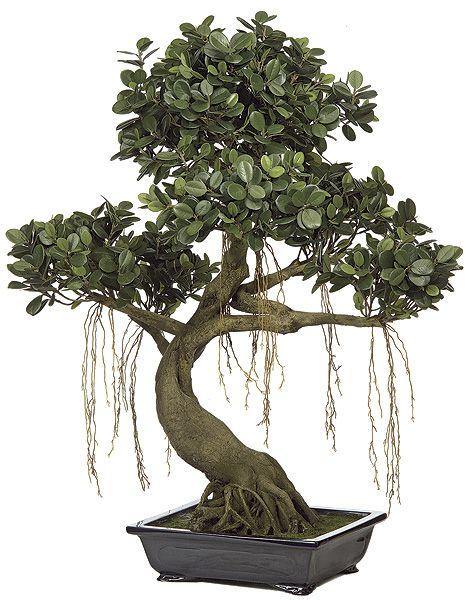 decorative artificial trees ficus panda bonsai. Black Bedroom Furniture Sets. Home Design Ideas