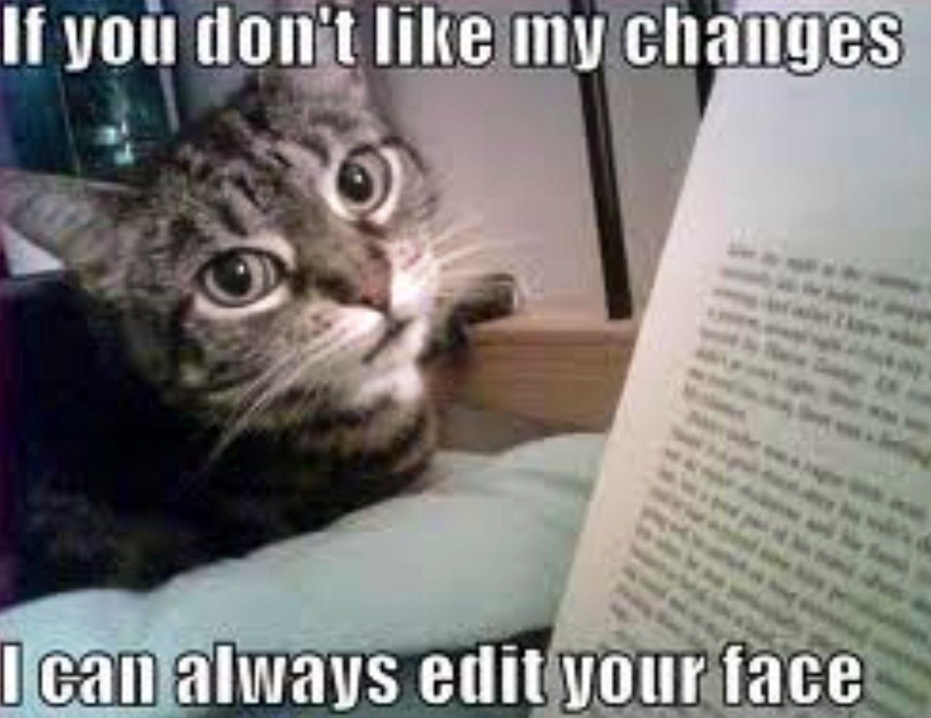 Hilarious. Funny cat captions, Cat quotes funny, Funny