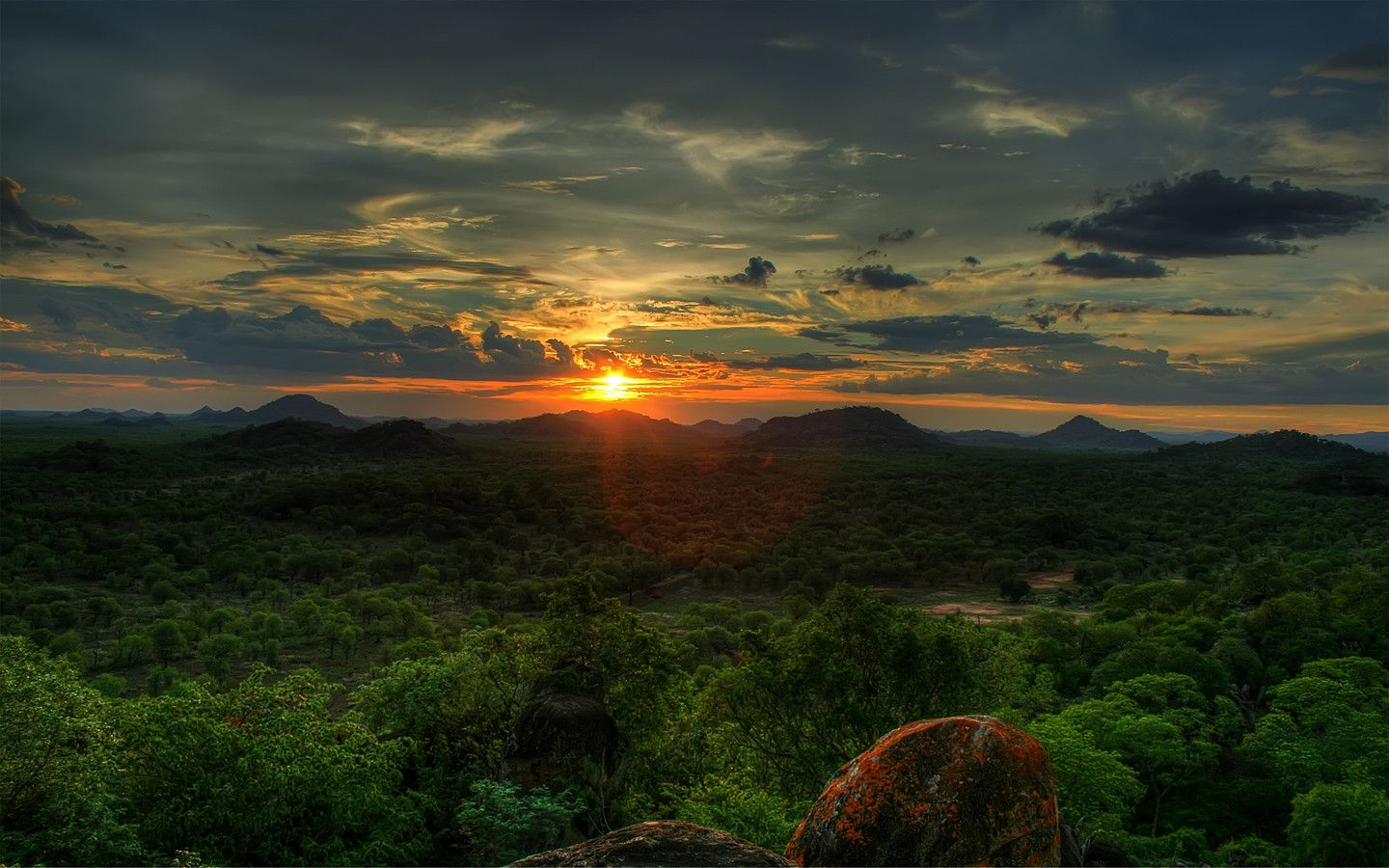 African Sunset Save Valley Conservancy Zimbabwe 1440x900 African Sunset Forest Sunset Sunset Pictures