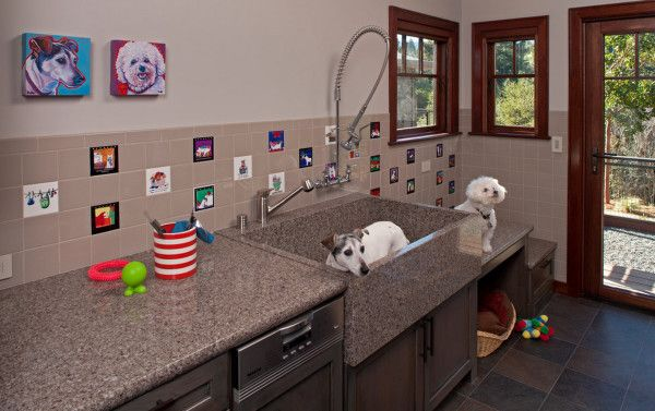 They Renovated Their Bathroom For Their Dog Sounds Crazy But It S Genius Mudroom Dog Room Dog Washing Station Dog Grooming Tubs