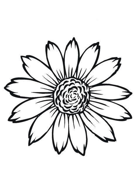 Desenho Flores Para Imprimir Girassol Desenho Flores Para