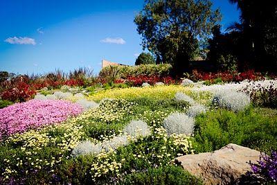 b9e51dbf9a63b4035bb3b71de6c3937e - Where Is Mount Annan Botanic Gardens
