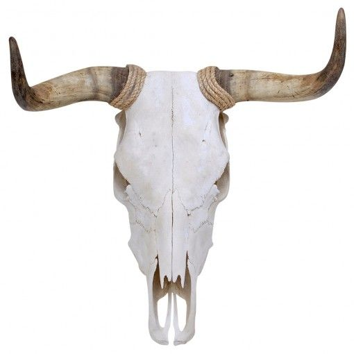Spanish Fighting Bull Skull Wall Decal Wallsneedlove Bull Skulls Skull Decal Cow Skull Decor