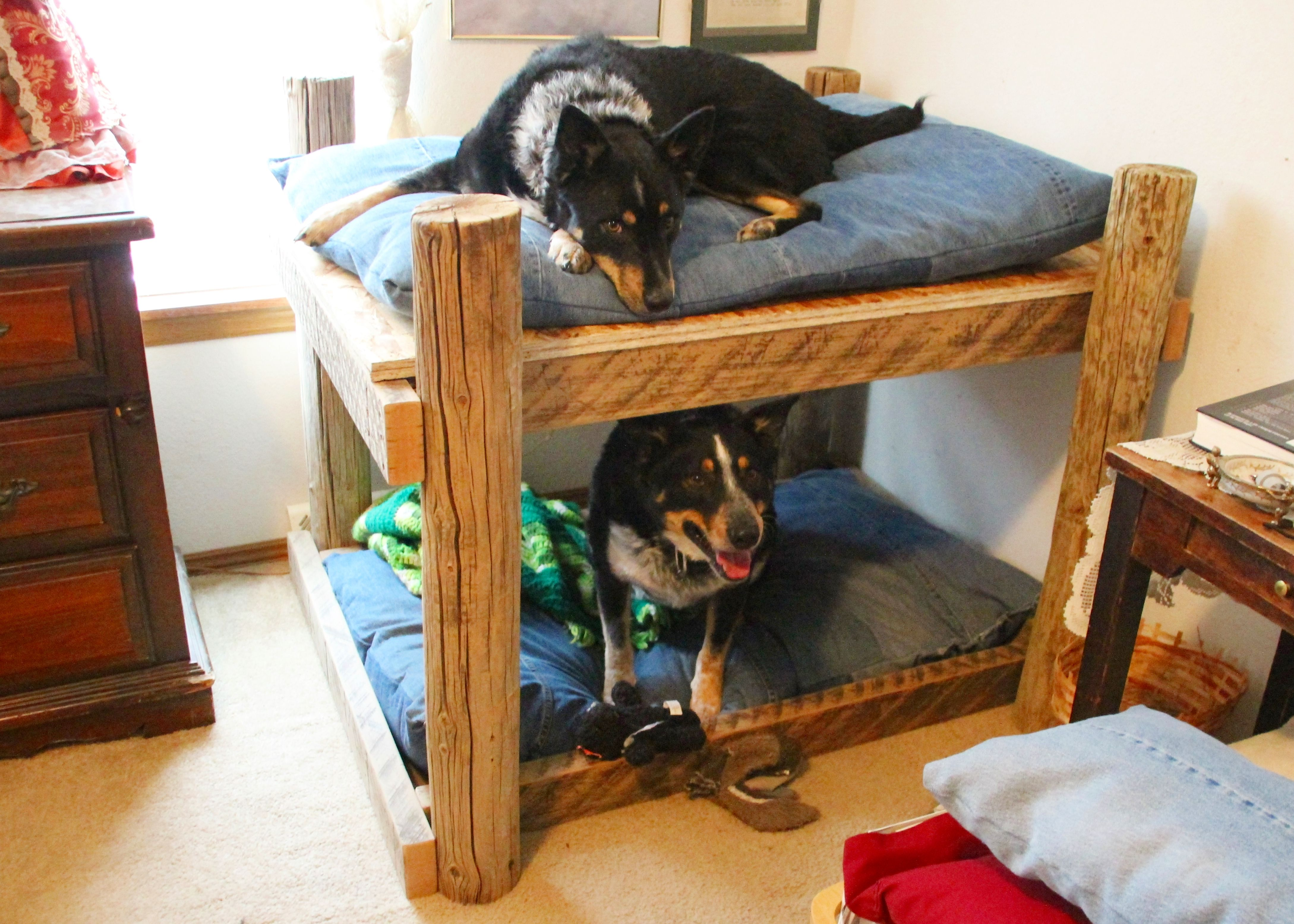 Diy Dog Bunk Bed From Junk Wood Pile To Doggie Dreams Projects