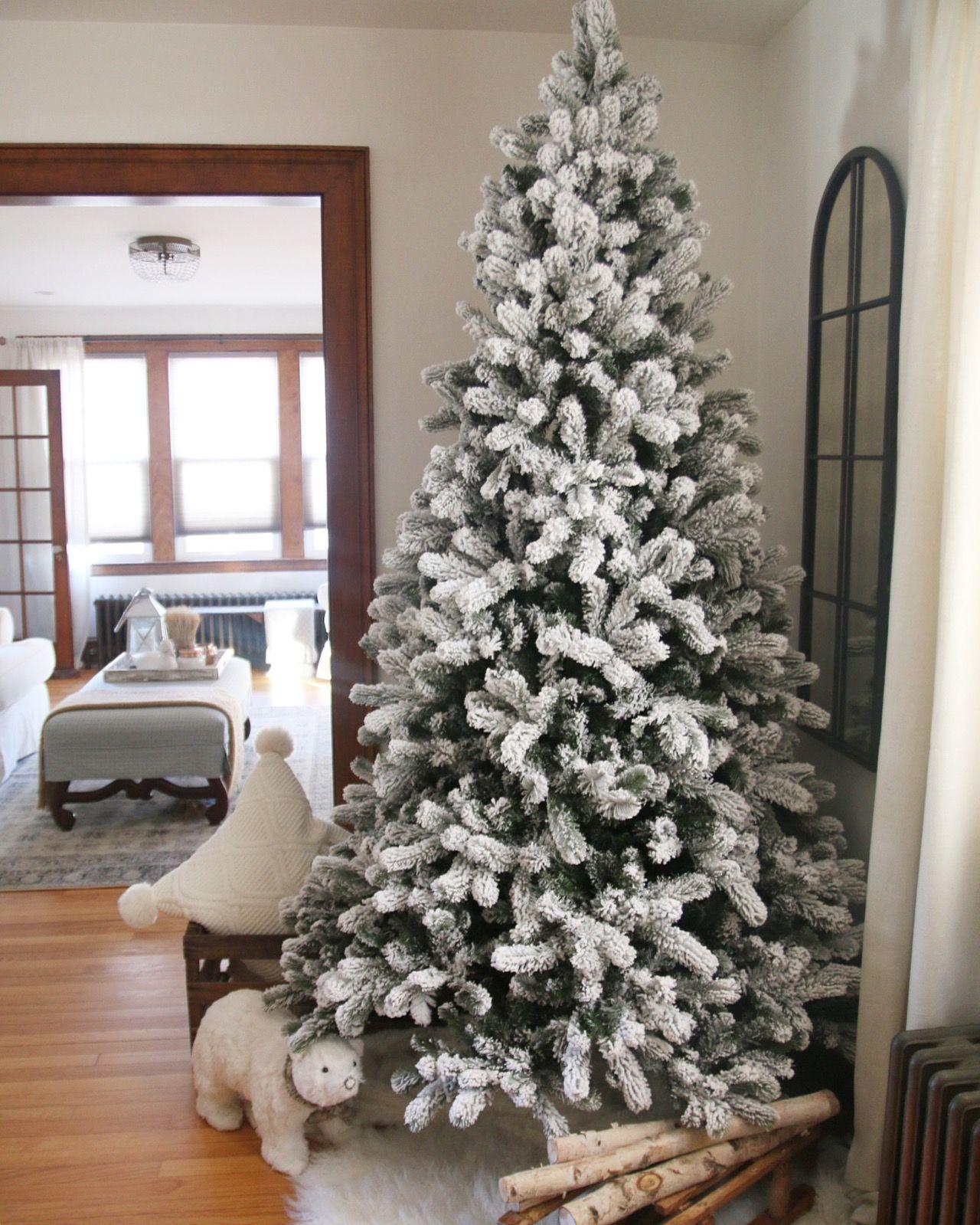 King of Christmas King flock | King Of Christmas Flock Christmas ...