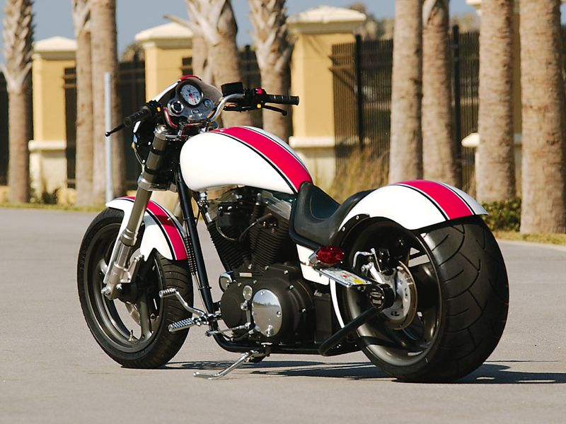 Custom Buell X 1 Motorcycle The Daytona Special Motorcycle Victory Motorcycles
