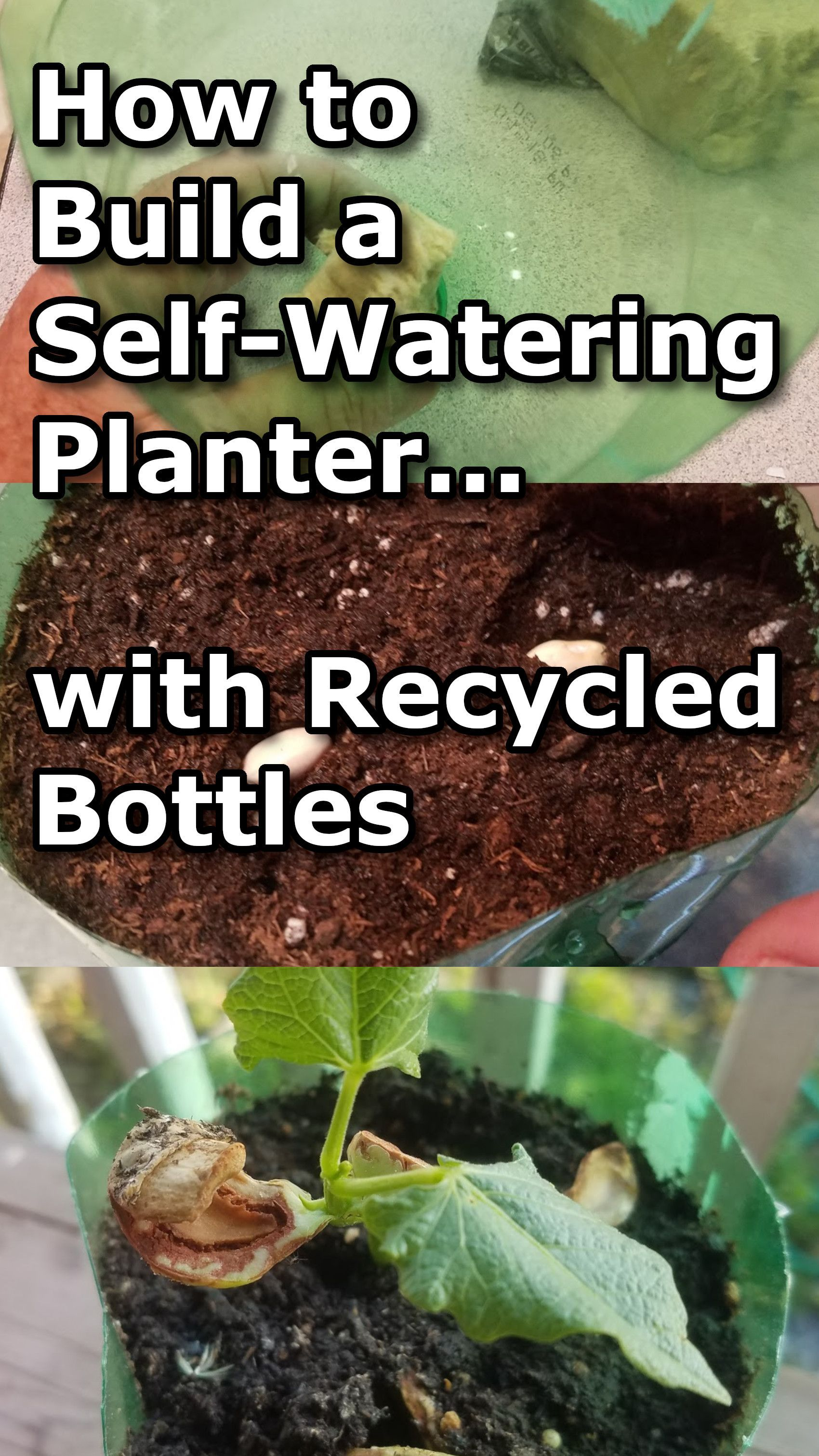 How to Build a Self-Watering Planter with a Recycled Bottle #selfwatering
