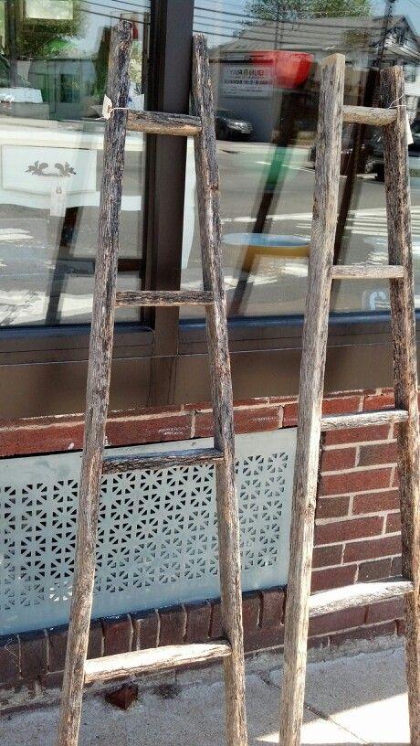 Amish garden ladders at Kalembar Dune, Boston