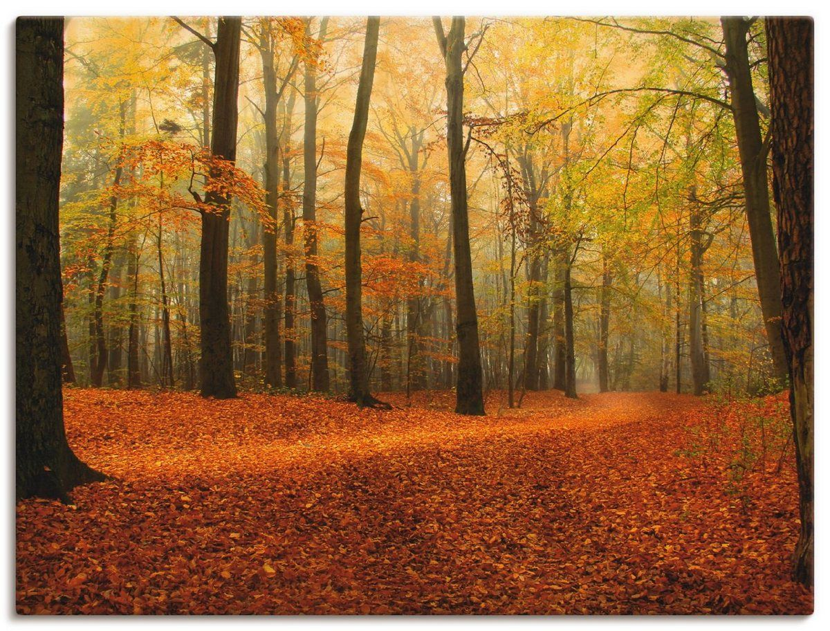 Photo of Artland Art Print Poster »Anke Brehm: Herbstwald« | OTTO