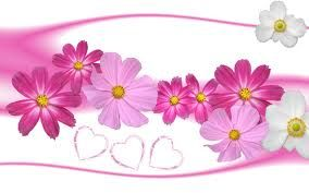 Awesome Lovely Flowers Wallpaper Pink Flowers Wallpaper Flower Wallpaper