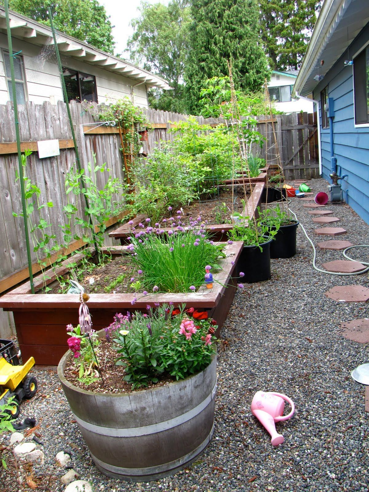 Side Yard And Driveway Gardens. (With Images)