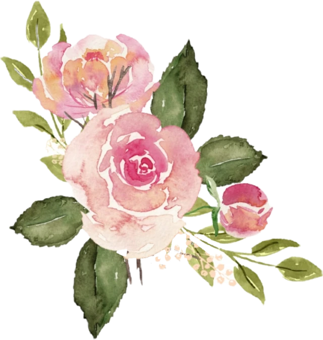 Watercolor Roses Flowers Floral Sticker By Stephanie In 2021 Watercolor Rose Pink Watercolor Flower Pink Rose Png