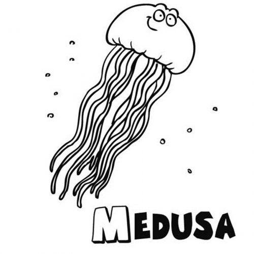 Dibujo de medusa para imprimir y pintar | juguetes de madera ...