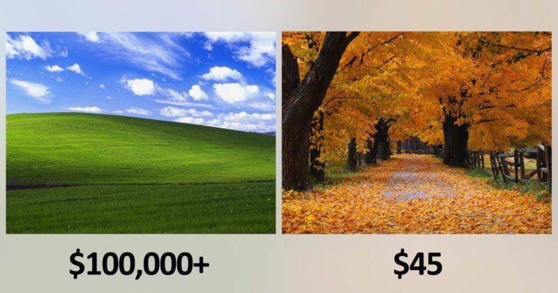 Microsoft Paid 'Bliss' Photog 100K+ and 'Autumn' Photog