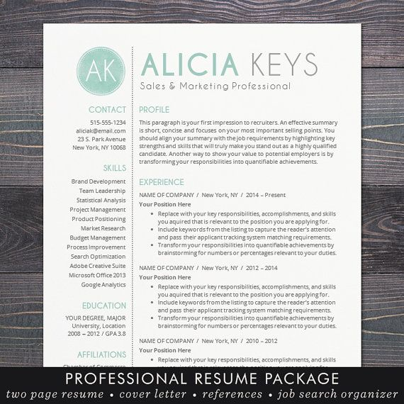 Google Docs Resume Template Professional Resume CV Template + Free - google docs resume templates