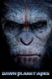 Maymunlar Cehennemi Safak Vakti Izle Yabanci Film Izle Planet Of The Apes Dawn Of The Planet Movies