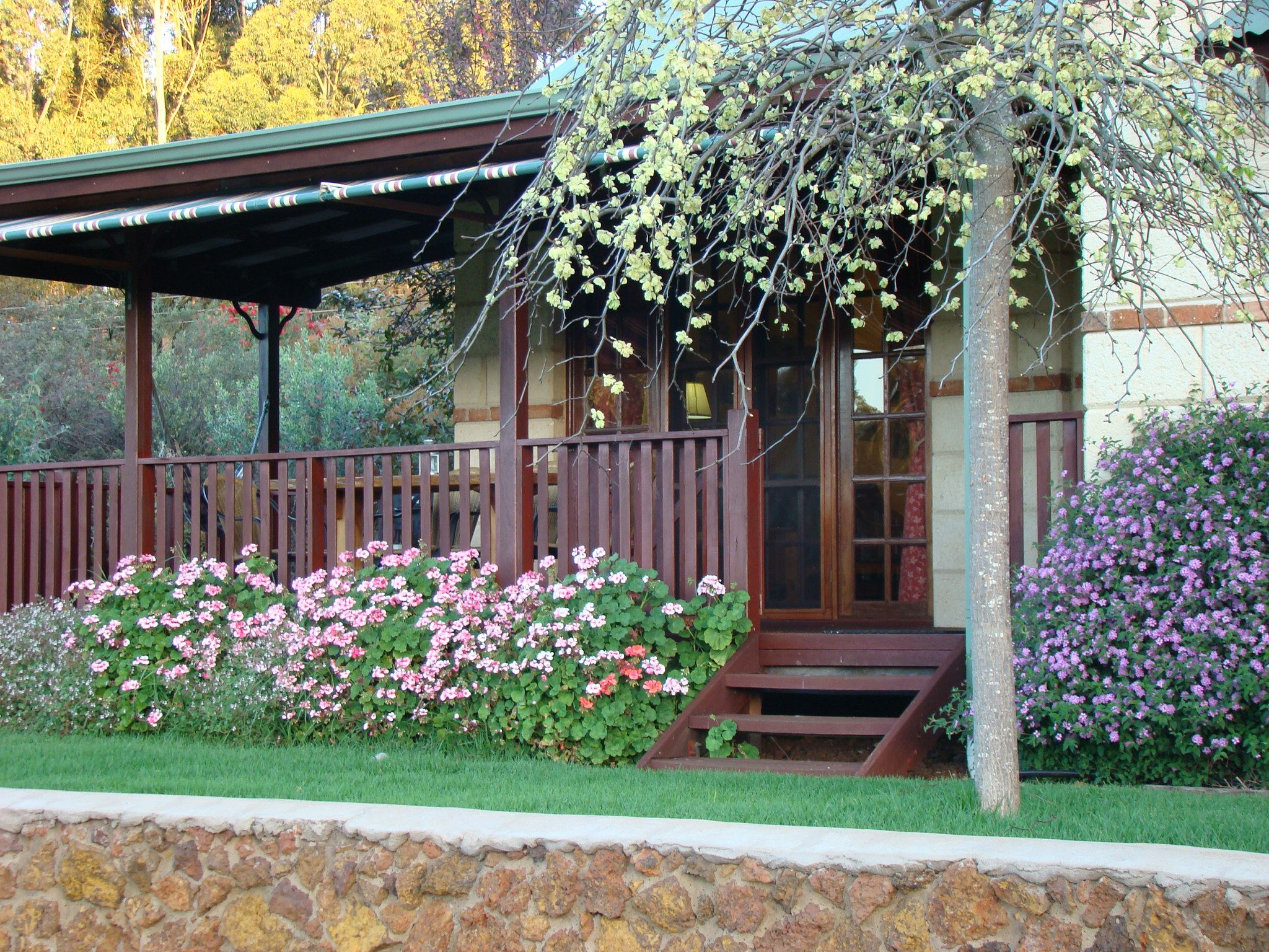 Cottage gardens australia front yard back yard for Front yard garden designs australia