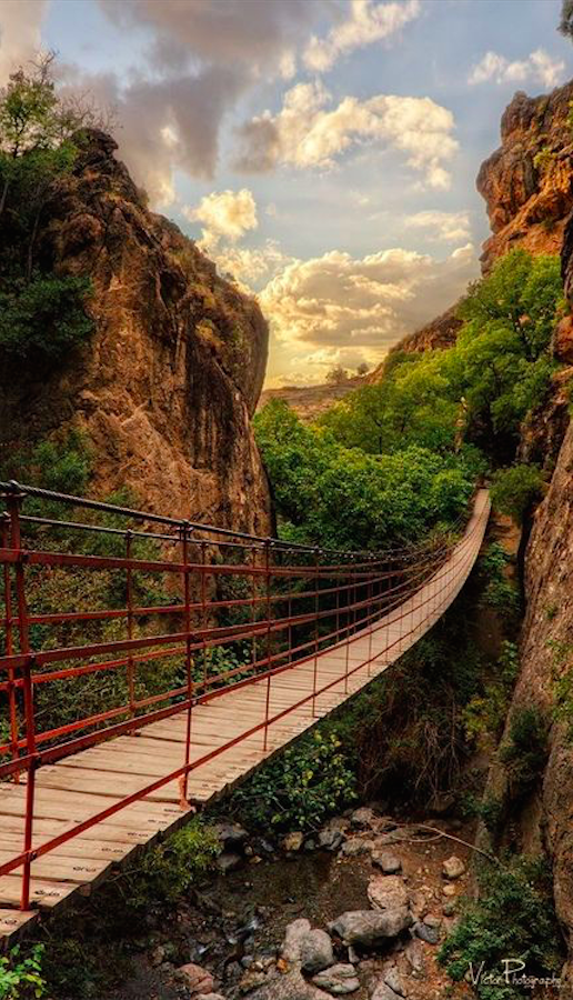 """""""Although all bridges are burned and it appears that there is no way to pass... There will always be a bridge for you."""" • Fotografía ViAn on 500x"""