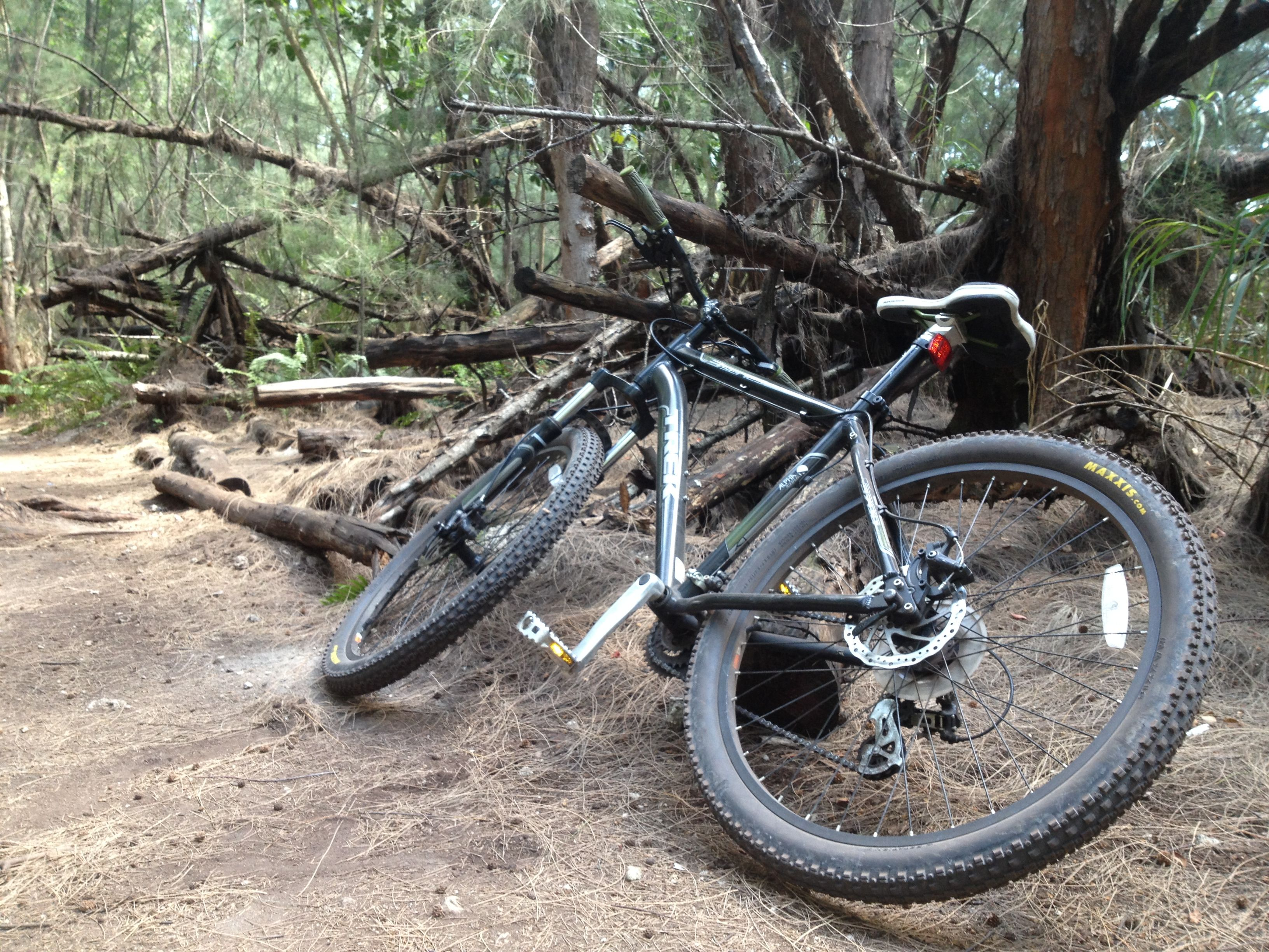 Mountain biking at Oleta state park FL | Mountain biking ...