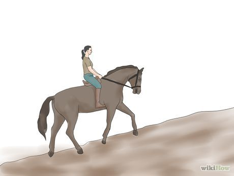 Condition Your Horse Step 7.jpg