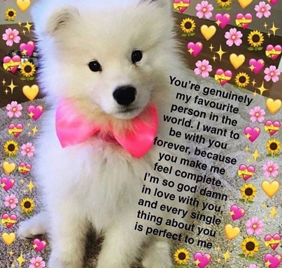 Pin by Spent Limitless on Flirty memes Cute love memes