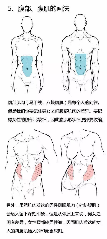 Tutorial de pintura] cómo dibujar una mujer muscular (del cuerpo de ...