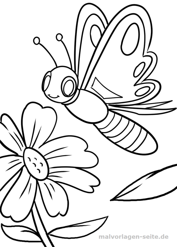 Malvorlage Schmetterling Ausmalbilder Kostenlose