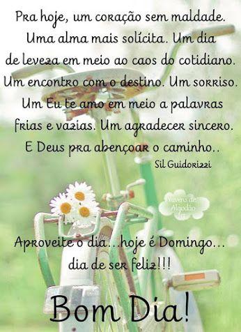 Pétalas Soltas Frases De Bom Dia Good Afternoon Good Morning E