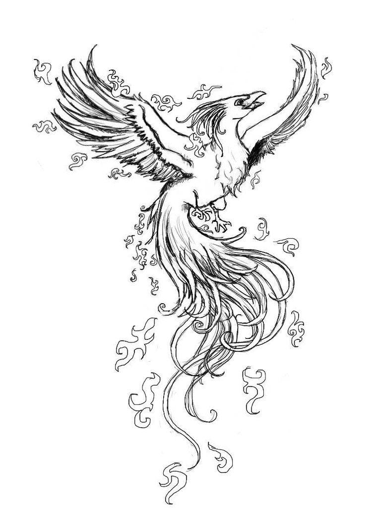 pinamanda presley on tattoopiercing ideas  bird