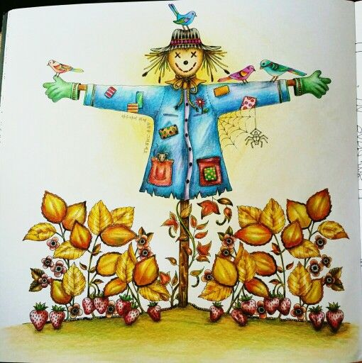 - My Secret Garden Coloring Book – Scarecrow Secret Garden Coloring Book, Coloring  Books, Johanna Basford Secret Garden