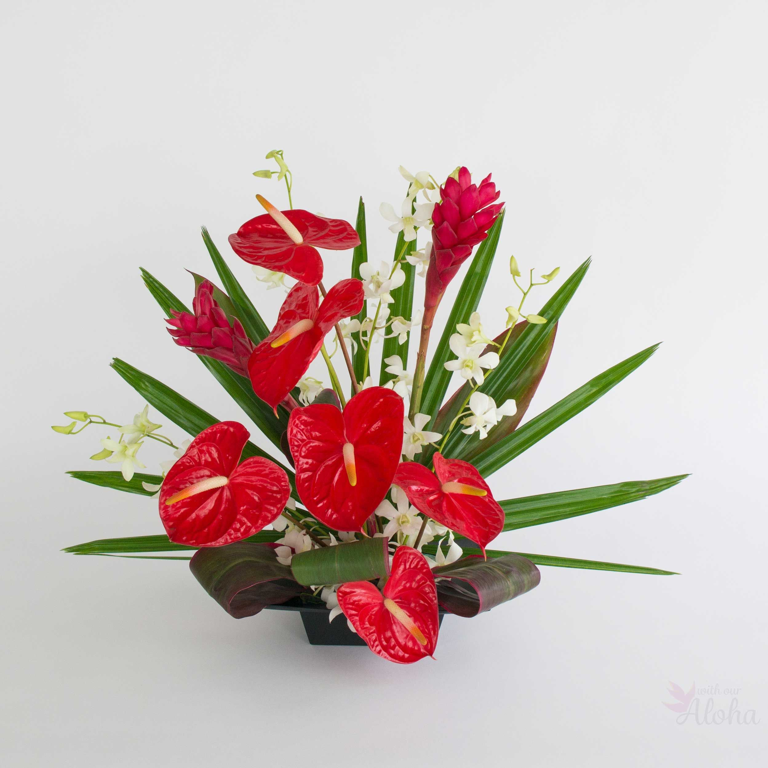 Ahi Fire Tropical Ginger Anthurium And Orchids Tropical Flower Arrangements Hawaiian Flower Arrangements Tropical Flower Arrangements Diy