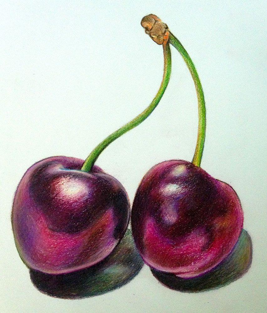 Cherries Still Life Drawings Still Life Drawing Fruits Drawing