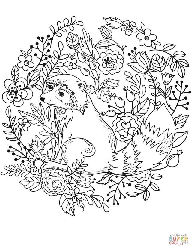 25+ Inspiration Picture of Raccoon Coloring Page