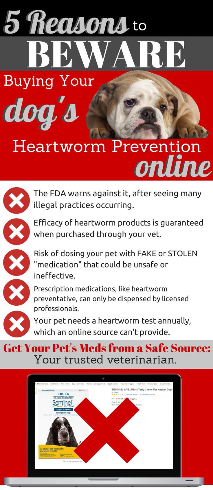 April is Heartworm Awareness Month! Heartworm prevention