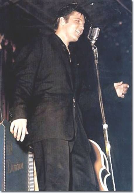 Elvis ❤️