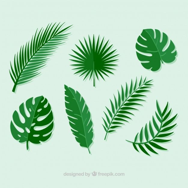 Download Pack Of Palm Leaves For Free Dinosaur Silhouette Giant
