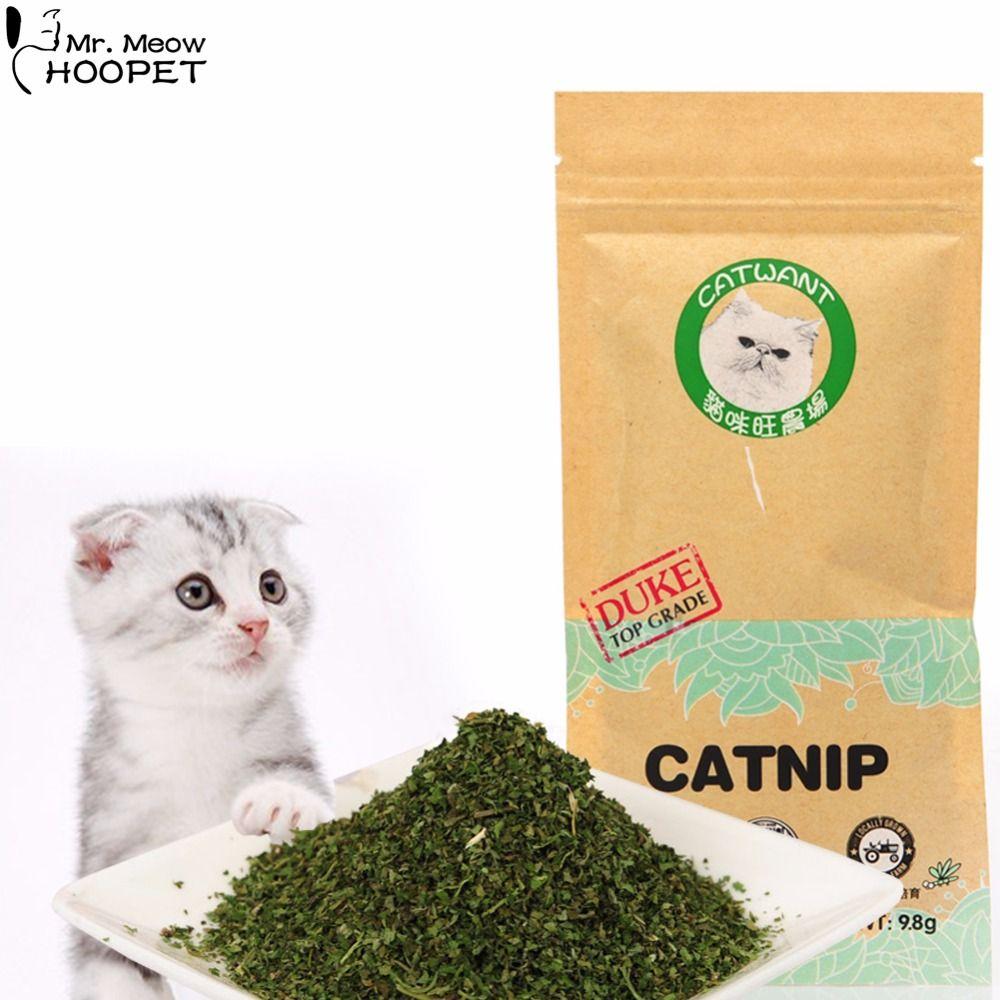 100 Natural Organic Premium Catmint Kocimietka 10g Mentol Smak Kot Traktuje Smieszne Zabawki Dla Kocieta Catnip Cat Treats Cat Toys