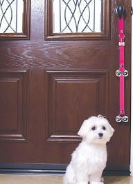 Training Puppy Or Dog To Ring Bell To Go Outside To Use Bathroom Dog Potty Training Potty Training Puppy Puppy Training