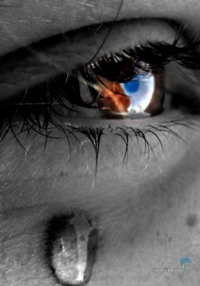 صور عيون حزينة تبكي دموع اروع 32 صورة عيون و دموع على الانترنت 2021 الطير الأبابيل Crying Eyes Eye Art Beautiful Eyes