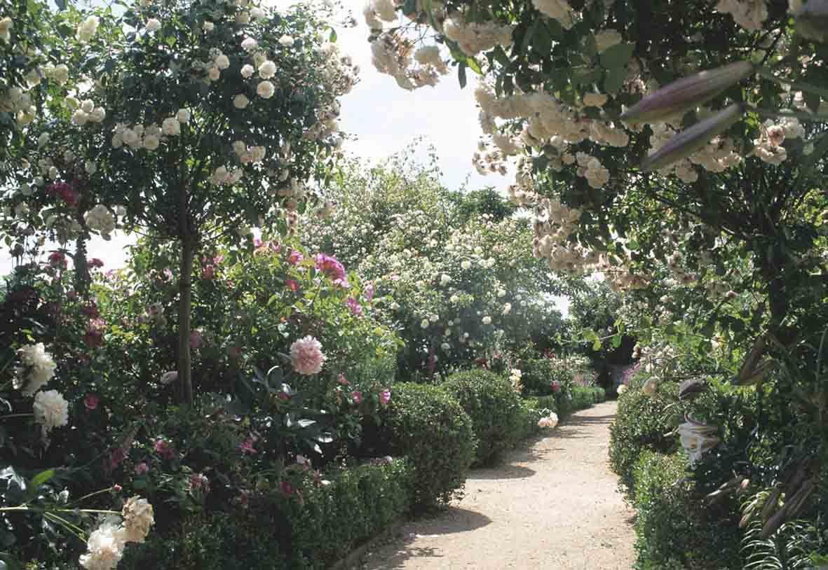 I J Bannerman Garden Designers And Builders
