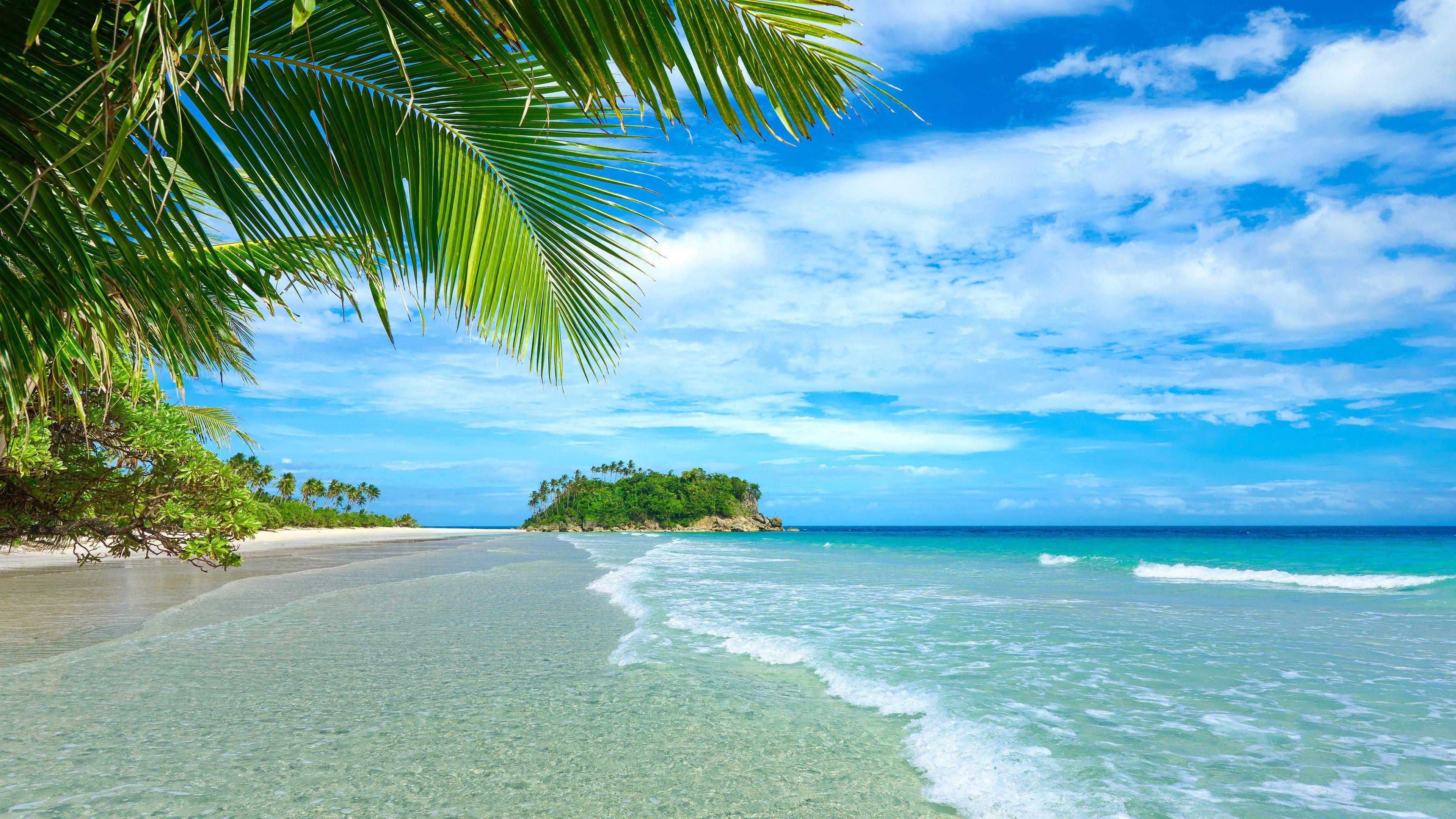 Bleu Ciel Et Mer Plage Cote Des Palmiers Tropical L Eau Fonds D Ecran 3840x2160 Uhd 4k Paysage Rose Fond Ecran Tropique