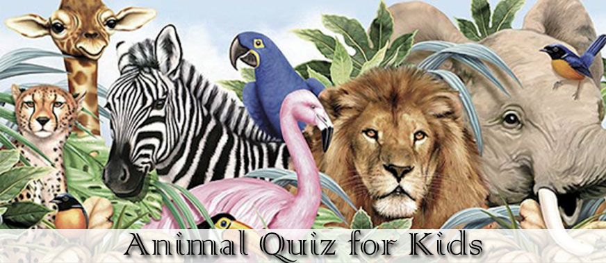 10+ Animal trivia questions for kids images
