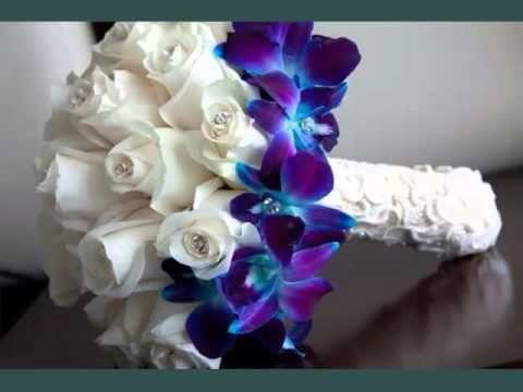 Pin by Jacqueline Fisher on Flowers | Pinterest | Orchid, Blue ...