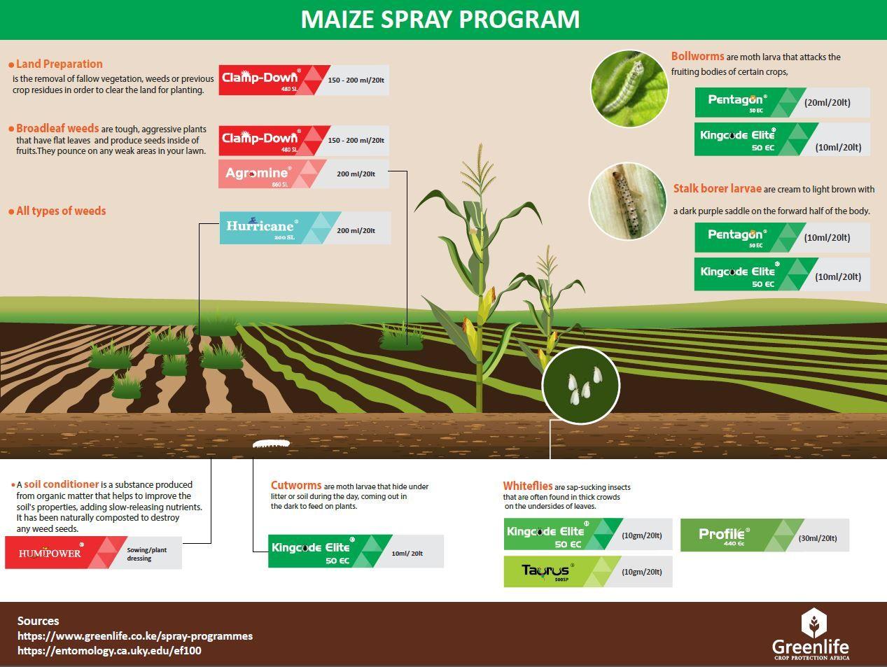 maize spray program Crop protection