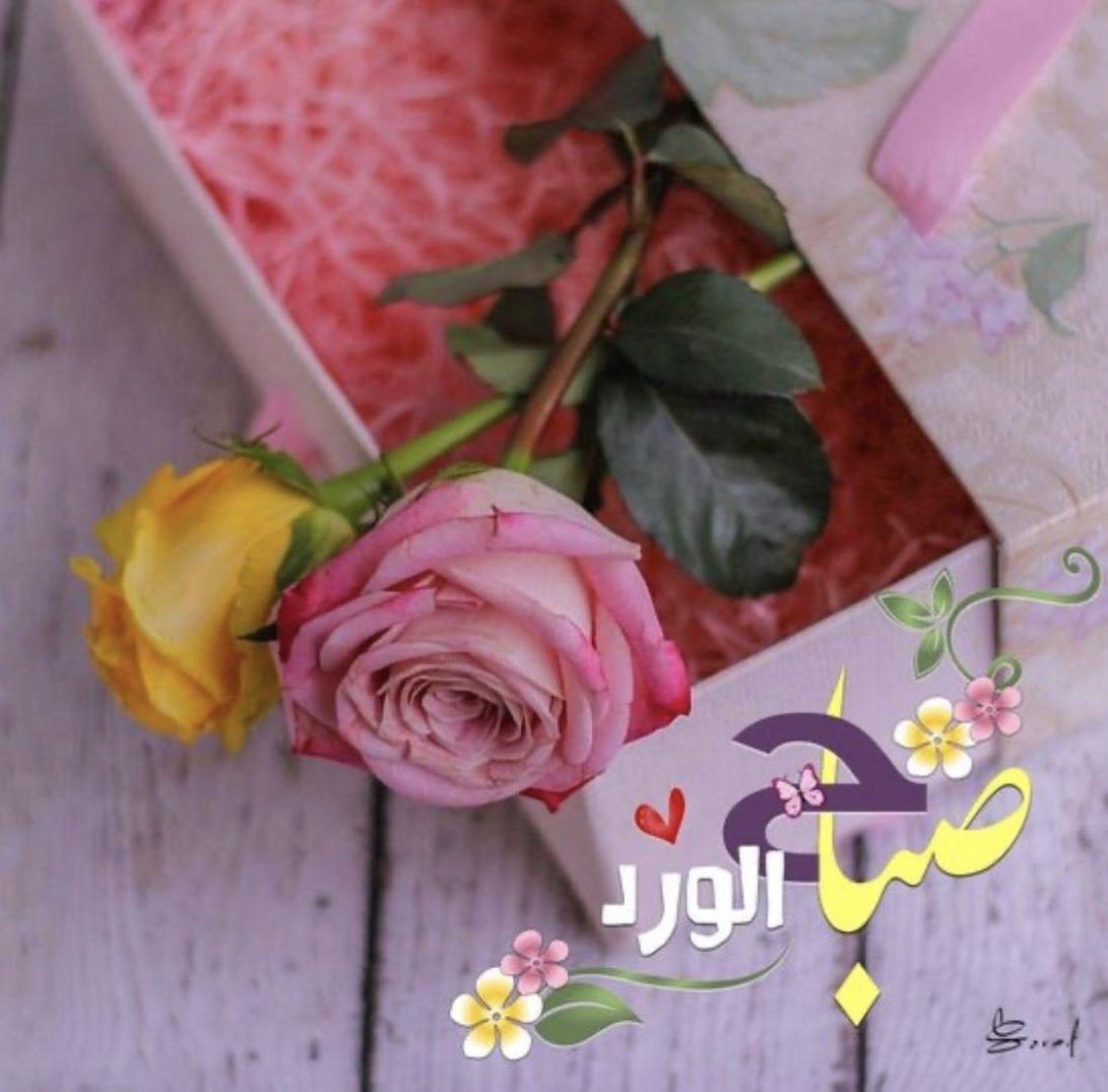 صباح الخير Good Morning Greetings Good Morning Arabic Good Morning Wishes