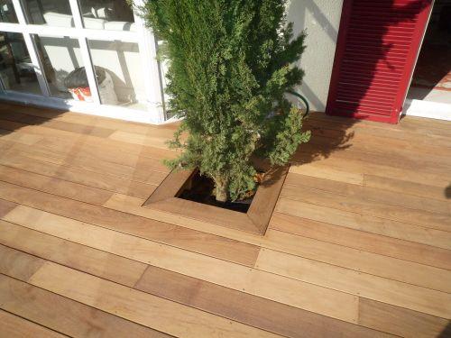 Incorporer un arbre dans ma terrasse bois terrasse Pinterest